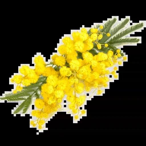 flower - Sticker 29