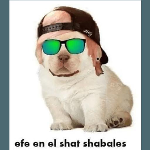 Memes en Español II - Sticker 16
