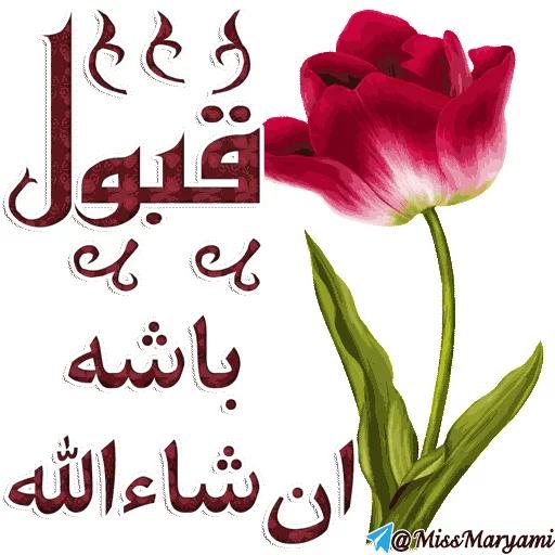 Mazhabi - Sticker 2