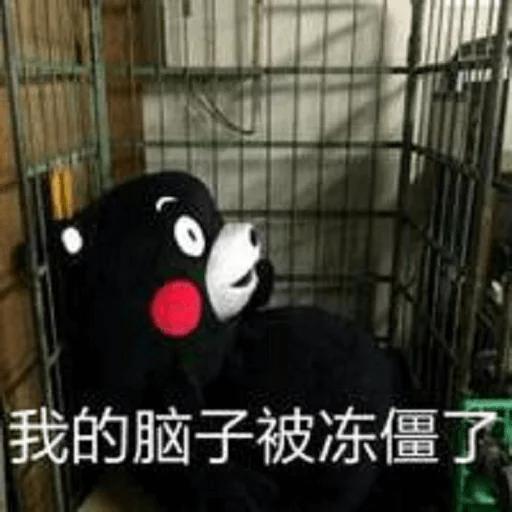 熊本熊2 - Sticker 4