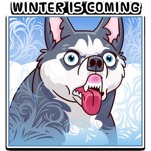 Moar Dogs - Sticker 12