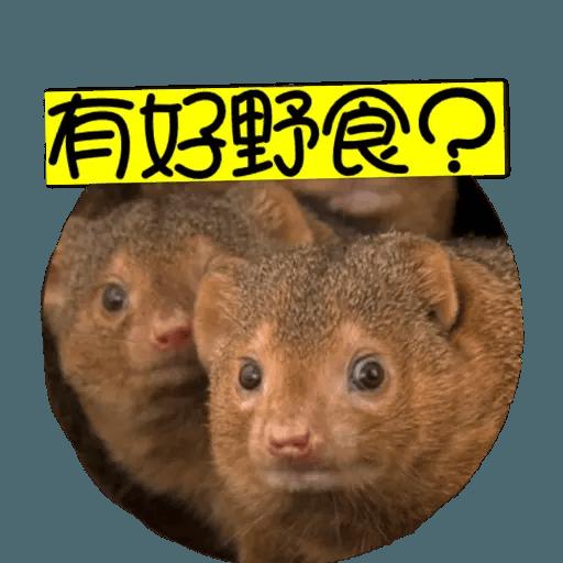 蛇獴救港 - Sticker 6