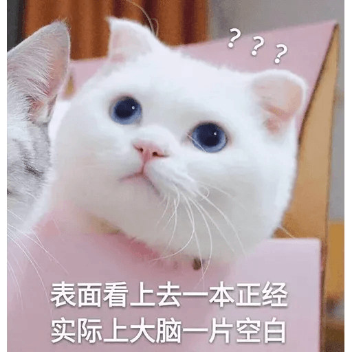 Cats? - Sticker 9
