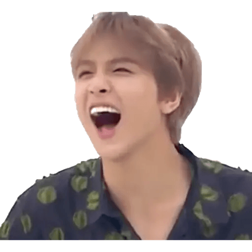 NCT memes - S3 - Sticker 3