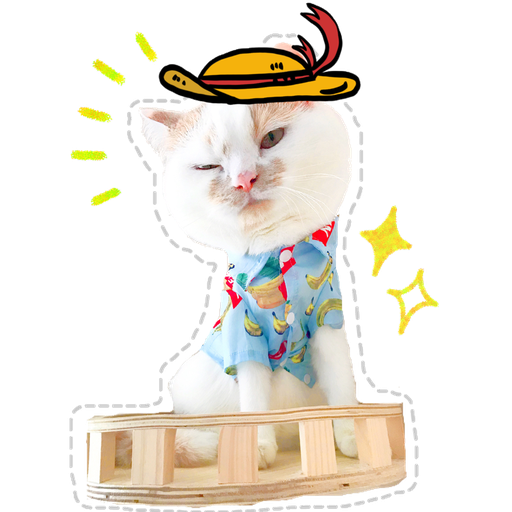 Cute cat - Sticker 3
