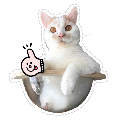 Cute cat - Sticker 5