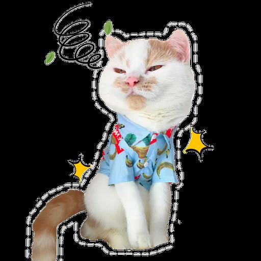 Cute cat - Sticker 7