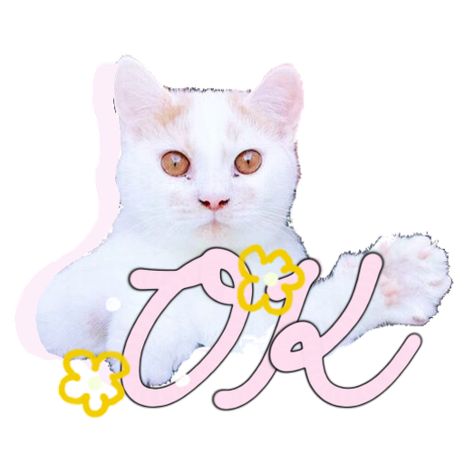 Cute cat - Sticker 1