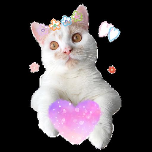 Cute cat - Sticker 9
