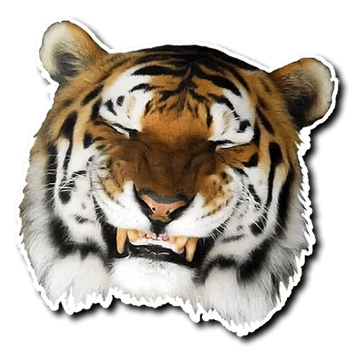 Tiger - Sticker 1