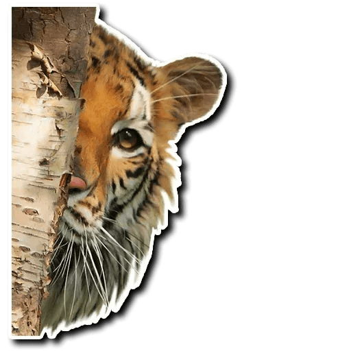 Tiger - Sticker 12