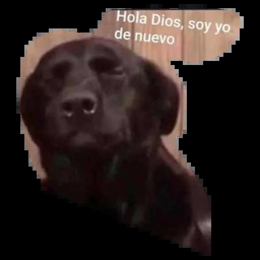 jesus - Sticker 2
