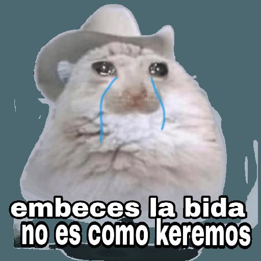 Memes en Español I - Sticker 16