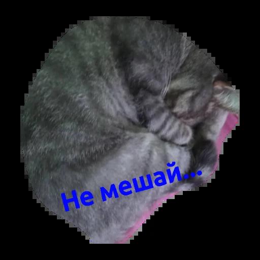 Милашки - Sticker 6