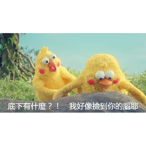 鸚鵡表情包 - Sticker 2