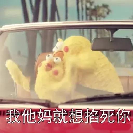 鸚鵡表情包 - Sticker 24