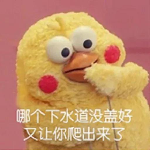 鸚鵡表情包 - Sticker 16