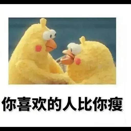 鸚鵡表情包 - Sticker 14