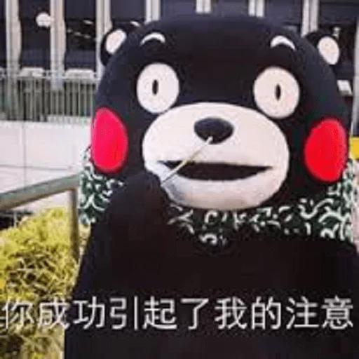 熊本熊 - Sticker 25