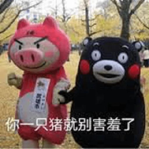 熊本熊 - Sticker 9