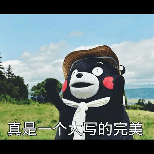 熊本熊 - Sticker 28