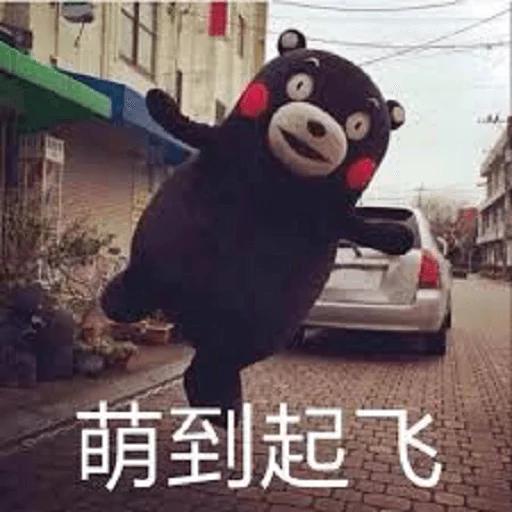 熊本熊 - Sticker 23