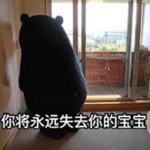 熊本熊 - Sticker 21