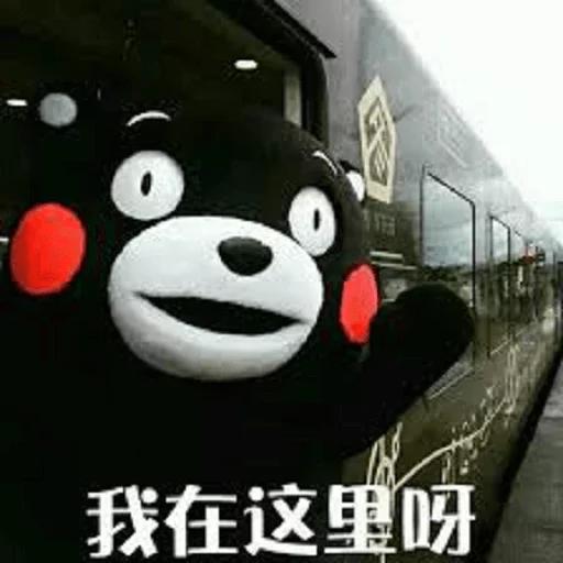 熊本熊 - Sticker 26