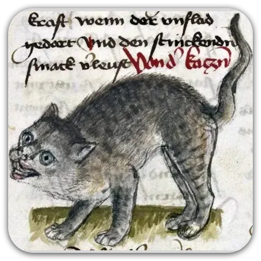 Medieval Cats - Sticker 11