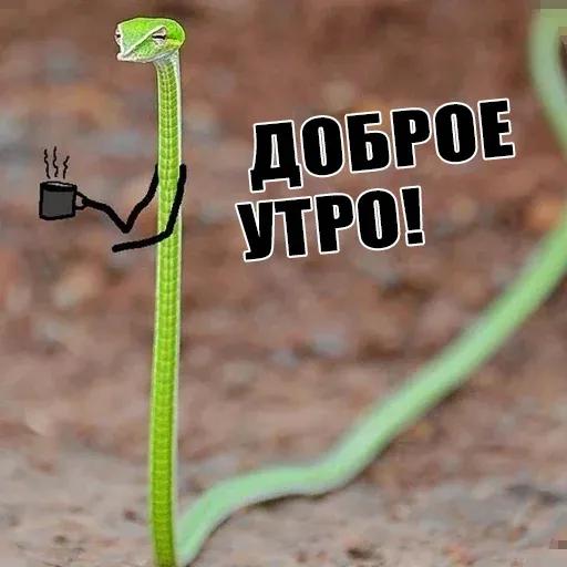 snake - Sticker 3