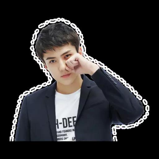 Exo - Sticker 12