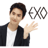 Exo - Tray Sticker
