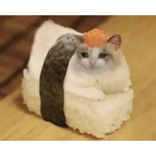 Cat1 - Sticker 5