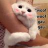 MEOOOO - Tray Sticker