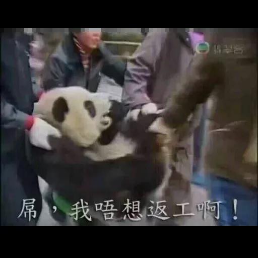 Wuhan pneumonia meme - Sticker 30
