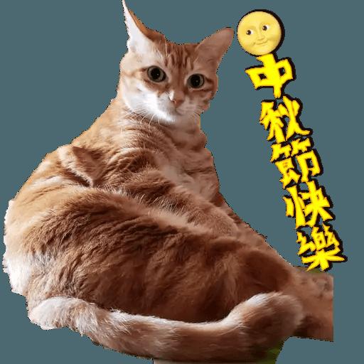 Tora and Kani 2 - Sticker 10