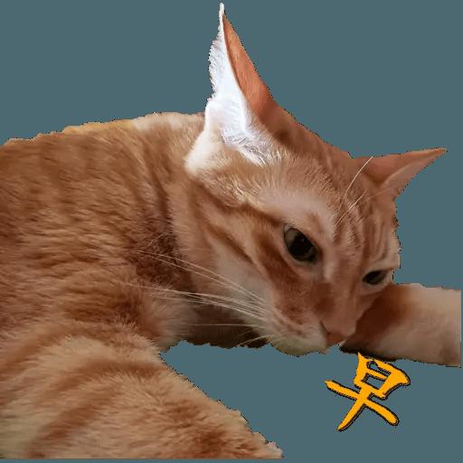 Tora and Kani 2 - Sticker 26