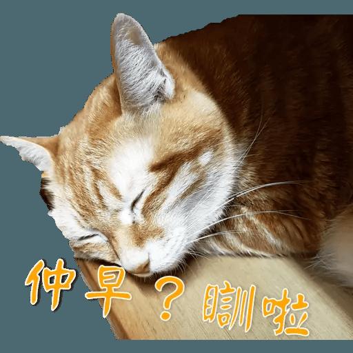 Tora and Kani 2 - Sticker 14