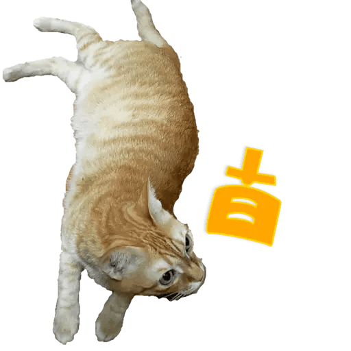 Tora and Kani 2 - Sticker 29