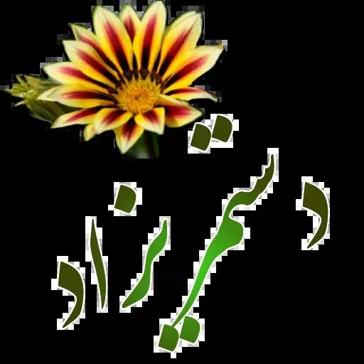 مراد اکبری ۳ - Sticker 3