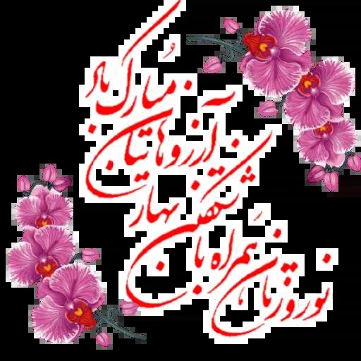 مراد اکبری ۳ - Sticker 8