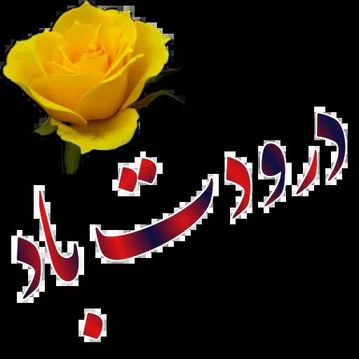 مراد اکبری ۳ - Sticker 1