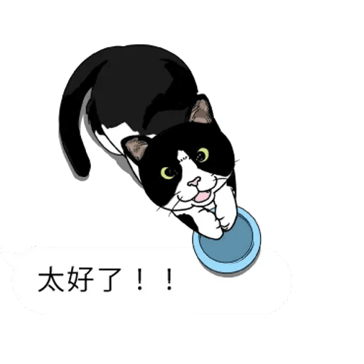 群聚在對話框上的貓 - Sticker 14