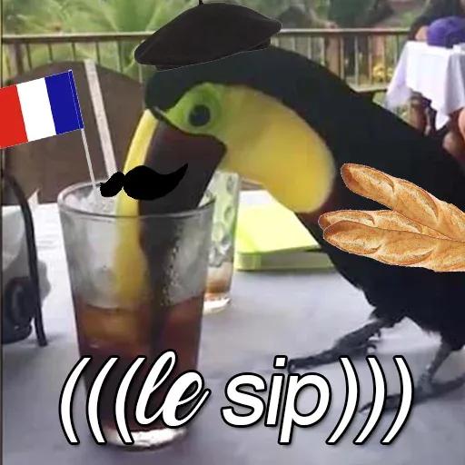 Bird 4 - Sticker 22