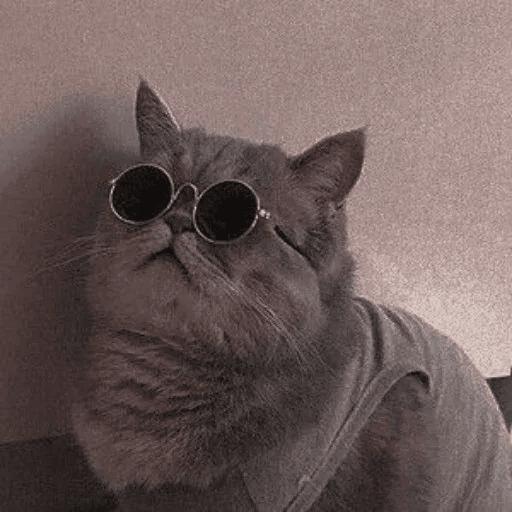 Meow:3 (3) - Sticker 11