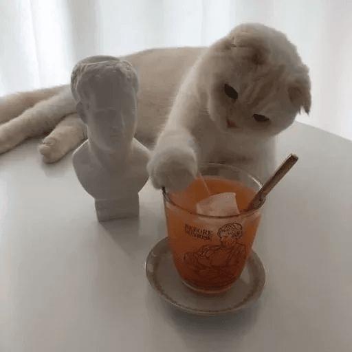Meow:3 (3) - Sticker 3