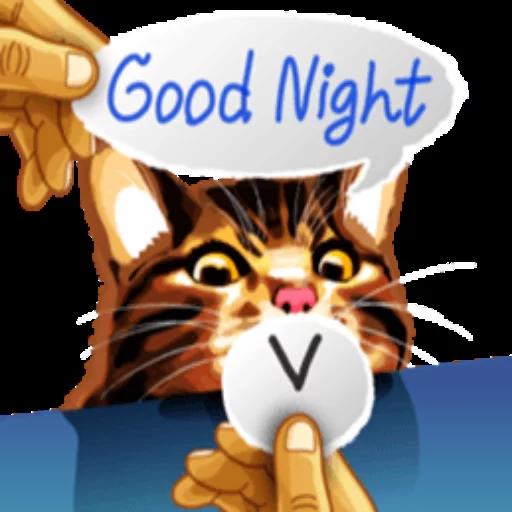 Meme Kat - Sticker 16