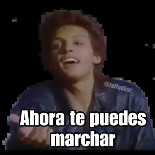 Luis Miguel - Chayanne - Mijares - Sticker 30