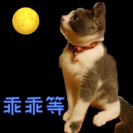 撳寶羅壹 - Sticker 14