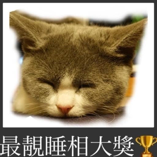 撳寶羅壹 - Sticker 8